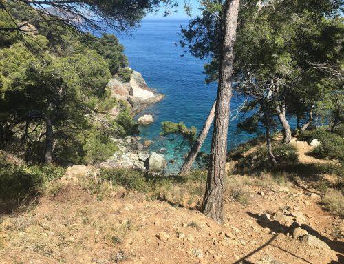 Wandelvakantie Catalonië mei 2019 Dag 4 (Cadaques naar Rosas) 25 km